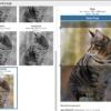 「Crop Thumbnails」サムネイル画像をトリミングできるワードプレスのプラグインにOGPサイズを追加する方法